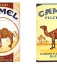 tobacco_camel_desert_e_liquid_3